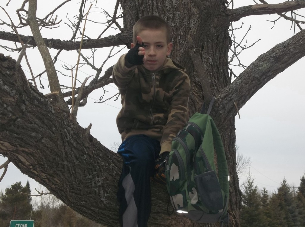 Luke in Tree